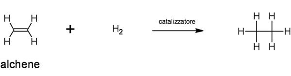 idrogenazione-catalitica