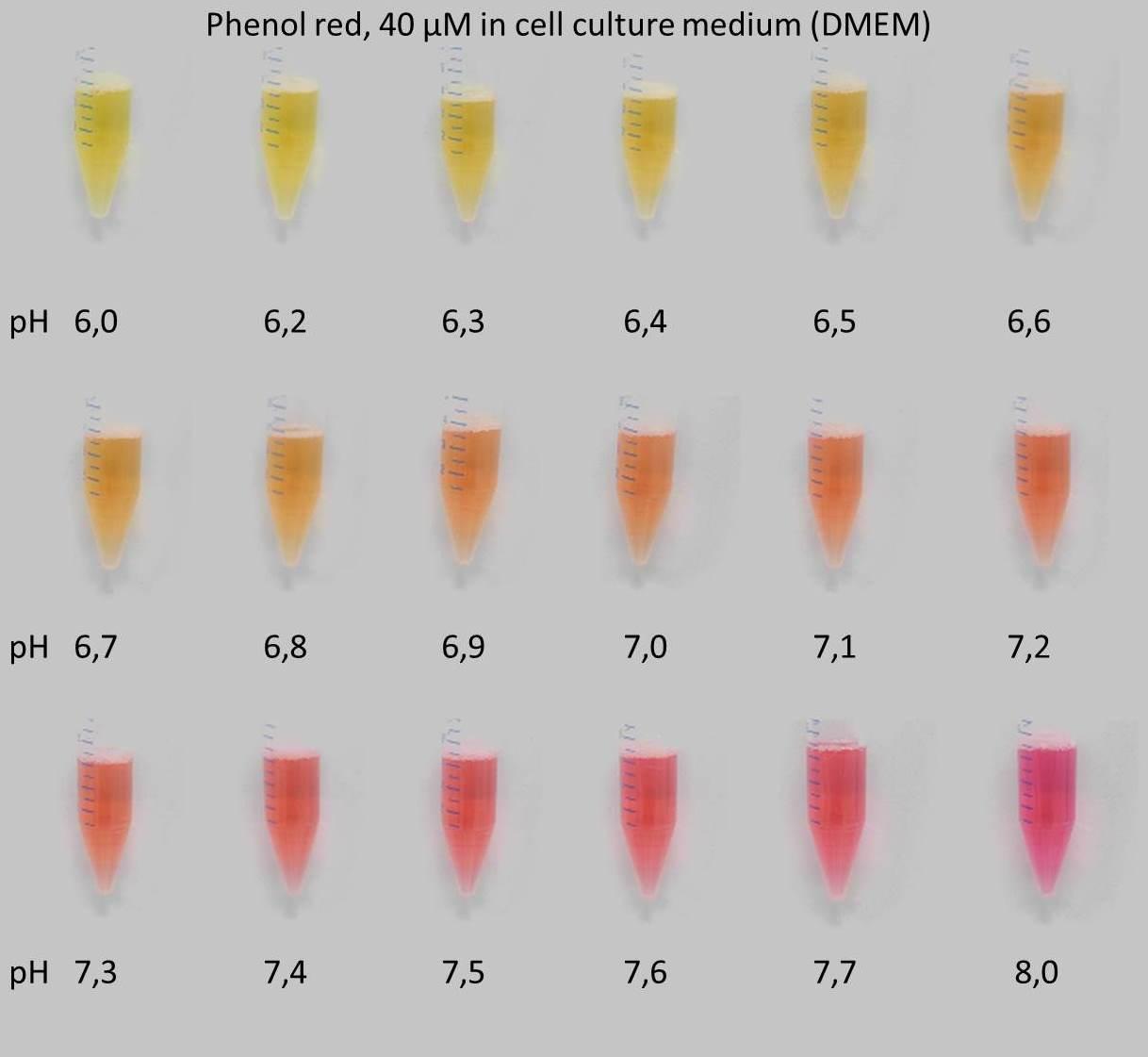 Il pH delle soluzioni saline e l'idrolisi di un sale- chimicamo