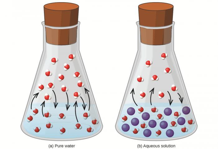 Legge di Raoult- deviazioni positive e negative dalla legge- chimicamo