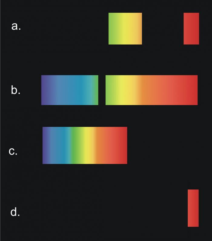spettro atomico-chimicamo