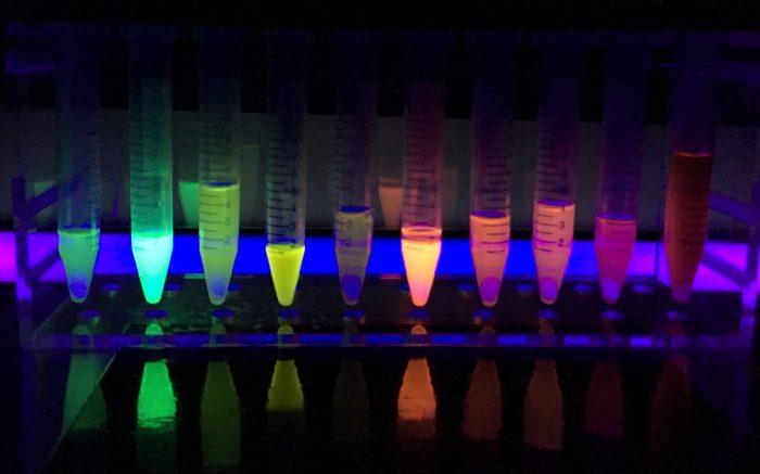 fluorescenza-chimicamo