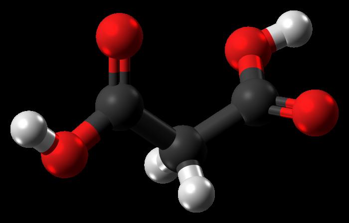sintesi malonica-chimicamo