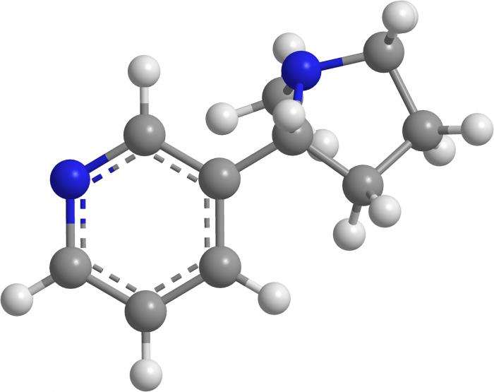 Analisi qualitativa organica - chimicamo