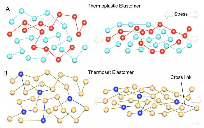 Elastomeri- chimicamo