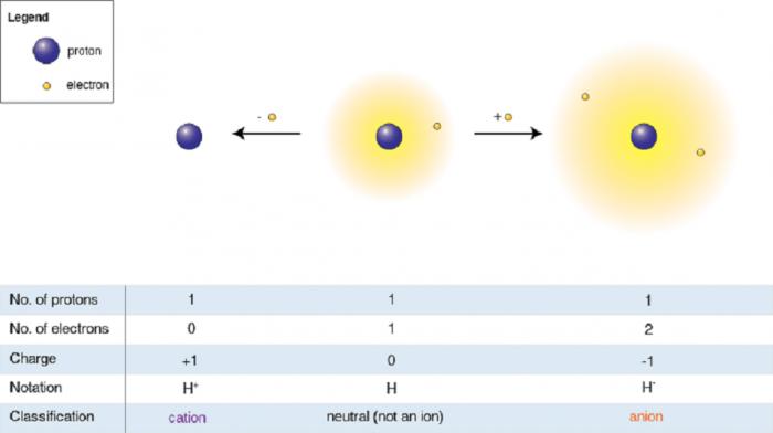 Determinazione quantitativa dei cationi- chimicamo