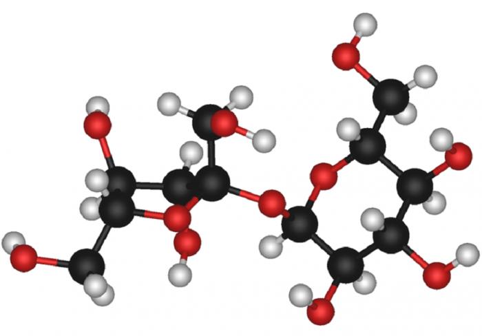 Disaccaridi- chimicamo