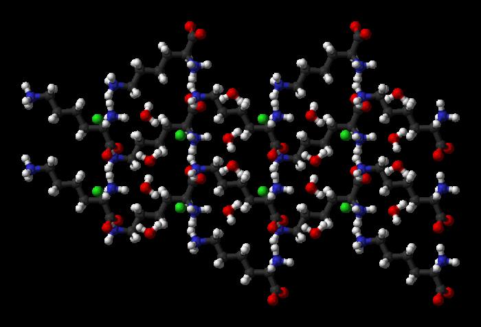 amminoacidi essenziali-chimicamo