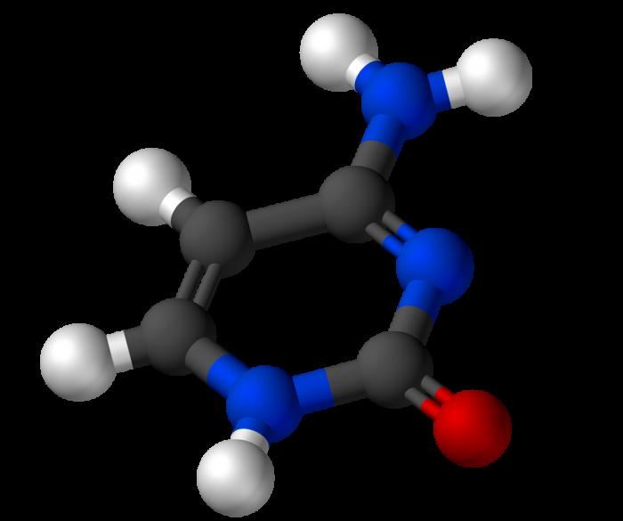Punto isoelettrico-chimicamo