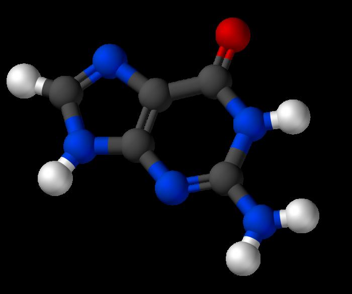 Composti eterociclici-chimicamo