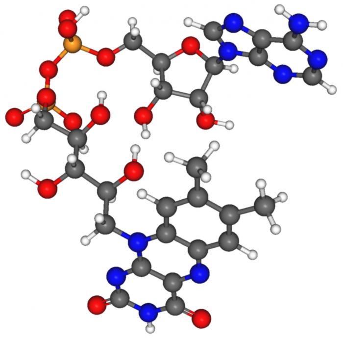 Reazioni metaboliche-chimicamo