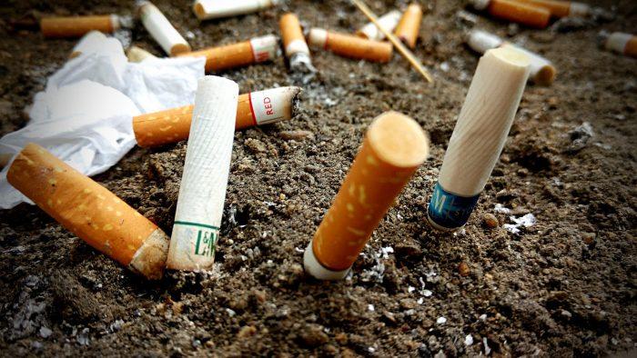 Nicotina- chimicamo