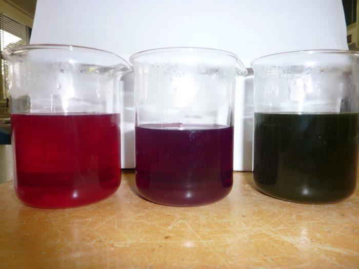 pH di acidi e basi monoprotici-chimicamo