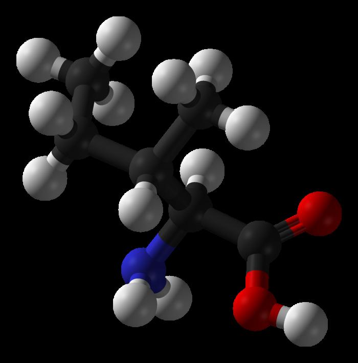 Isoleucina-chimicamo