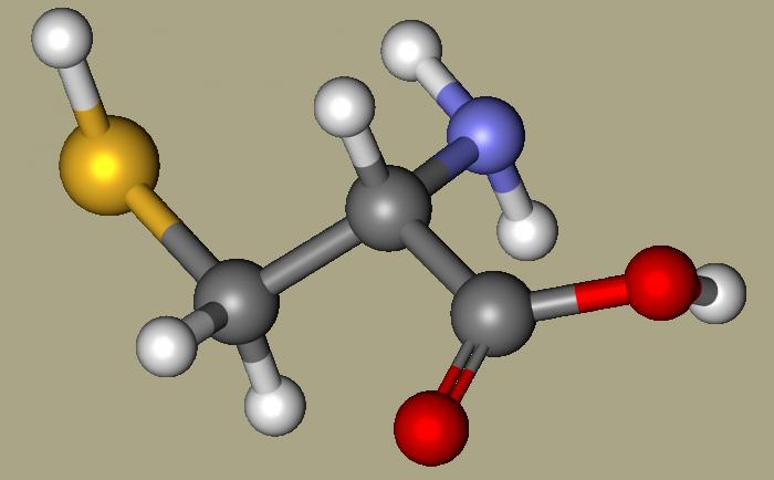 cisteina-chimicamo