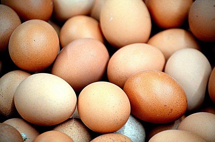 Guscio dell'uovo: formazione-chimicamo