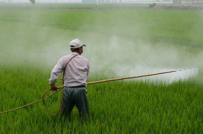 Pesticidi, antibiotici e ormoni negli alimenti-chimicamo