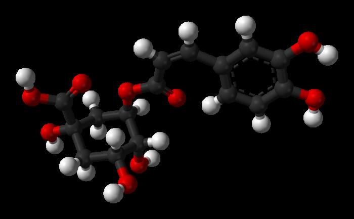 Acido clorogenico attività farmacologica-chimicamo
