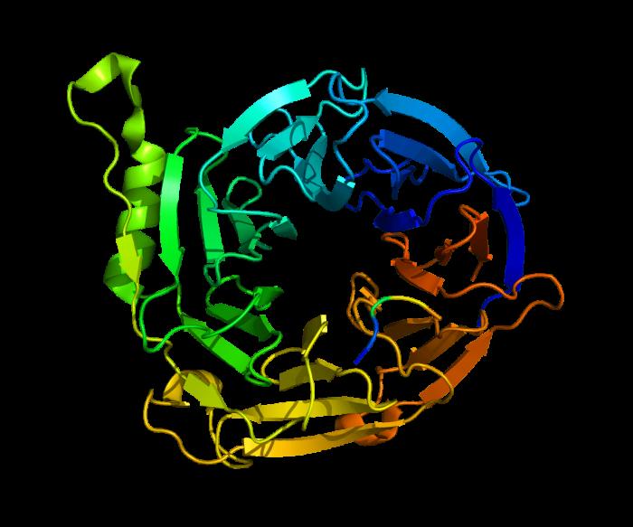 Reattivo di Nessler- chimicamo