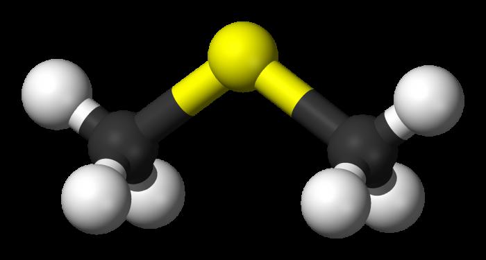 dimetil solfuro- chimicamo