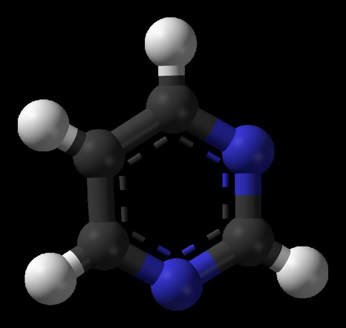 pirimidina - chimicamo
