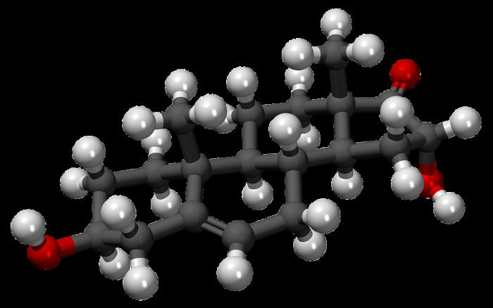 Steroli-chimicamo