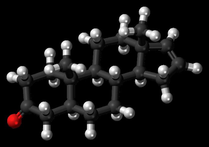 Steroidi- chimicamo