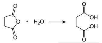sintesi acido succinico da anidride succinica
