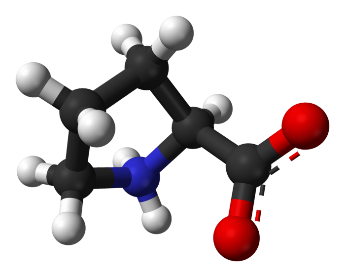 Prolina- chimicamo