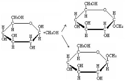 legame glicosidico