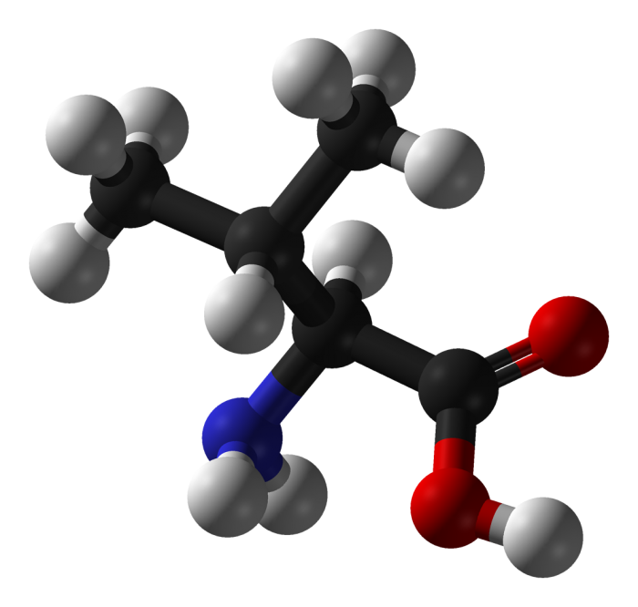 valina- chimicamo
