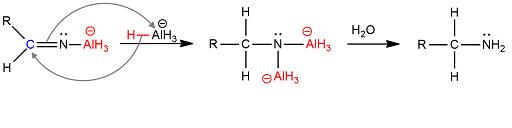I nitrili sono composti organici di formula R-C≡ N in cui R è un gruppo idrocarburico alifatico o aromatico. L'atomo di carbonio legato all'azoto presenta ibridazione sp e, essendo l'atomo di azoto più elettronegativo rispetto all'atomo di carbonio, quest'ultimo presenta una parziale carica positiva ed è soggetto ad attacchi nucleofili. Dalla reazione tra un nitrile e un riducente si ottiene un'ammina primaria. Il riducente che viene usato è il litio alluminio idruro piuttosto che il sodio boroidruro che ha un minore potere riducente pertanto la reazione viene condotta in solventi inerti come dietiletere e tetraidrofurano in quanto in solventi protici il litio alluminioidruro reagisce in modo violento. La reazione può essere schematizzata come: R-C≡N → R-CH2-NH2 Il litio alluminio idruro ha formula LiAlH4 ed è un forte agente riducente che costituisce un fonte di ioni idruro H– essendo un composto ionico costituito dallo ione Li+ e dall'anione tetraedrico AlH4-. La reazione avviene secondo un meccanismo di addizione nucleofila e prevede nel primo stadio della reazione l'addizione di un idruro al carbonio legato all'azoto, la rottura del triplo legame con formazione di AlH3 e di un azoto carico negativamente che si lega all'alluminio Fig1°stadio Nel secondo stadio si ha un'ulteriore addizione di un idruro con rottura del doppio legame carbonio-azoto e formazione di un intermedio che, in presenza di acqua dà luogo alla formazione dell'ammina primaria