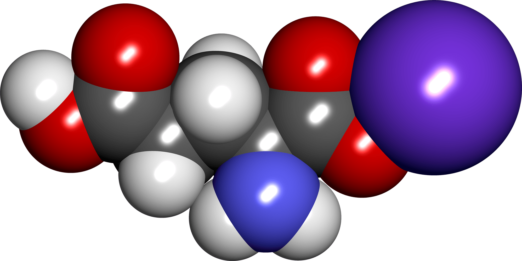 Ruolo del glutammato nel metabolismo- chimicamo