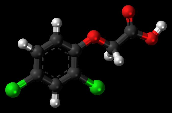 Transesterificazione- chimicamo
