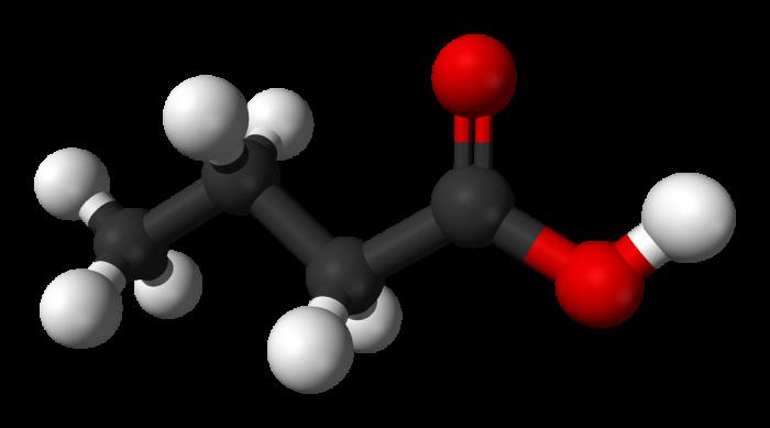 acido butirrico-chimicamo