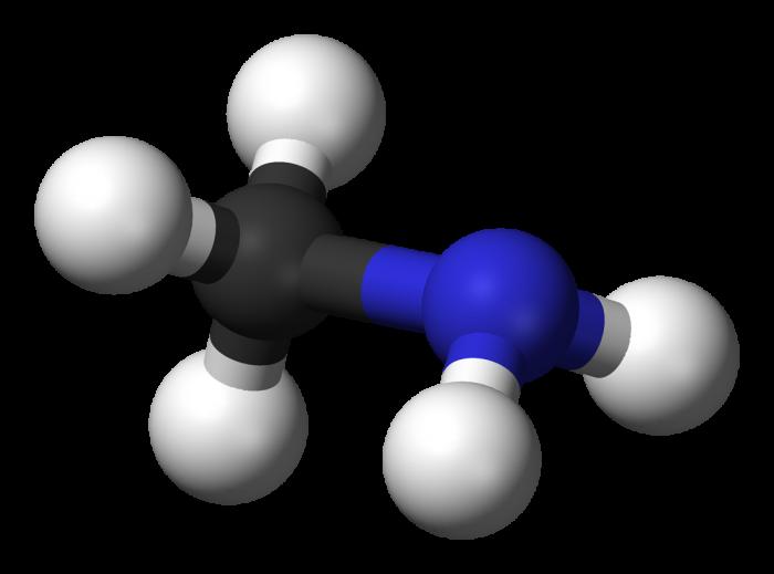 Gruppo amminico-chimicamo