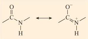 struttura legame