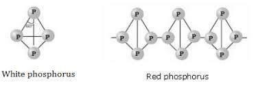 fosforo bianco e rosso