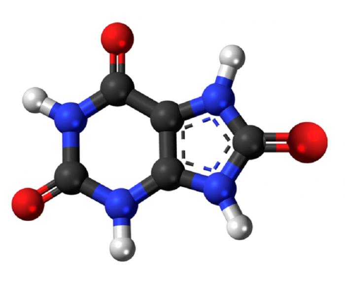 Acido urico-chimicamo