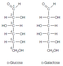 glucosio e galattosio