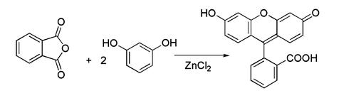 sintesi fluoresceina