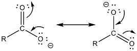 ione carbossilato